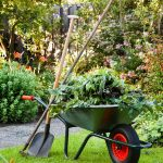Clonakilty Garden and Tree Services