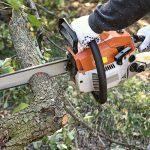 Garden Services, Tree pruning, Crown lifting, Tree thinning and reduction, Tree removal